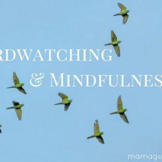 Birdwatching: A Beautiful Way to Practice Mindfulness