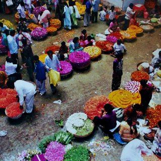 Trip to a Bangalore Market