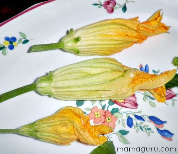 Fried Squash Blossoms Stuffed with Herbed Goat Cheese