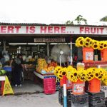 Fruit Stand in the Redlands