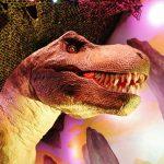 Dino Island and Miami Children's Museum