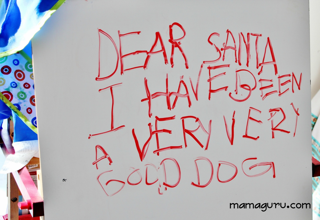 A DogS Letter To Santa  Mamaguru