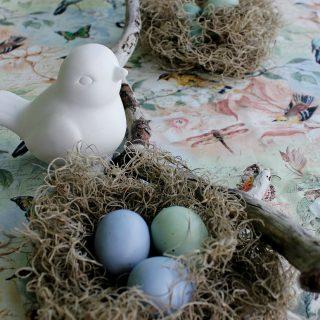 Bird's Nest Easter Theme