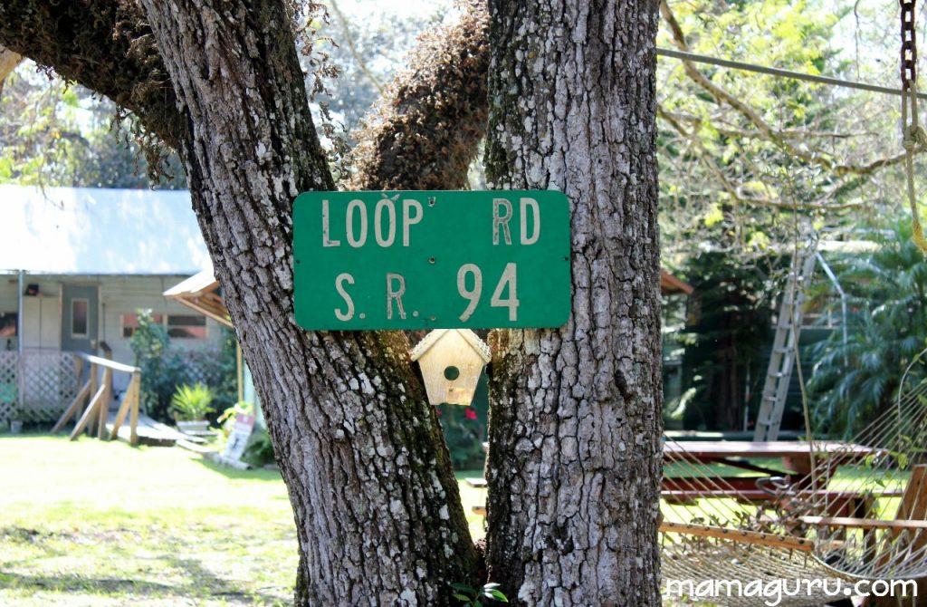 loop road 005 (1280x838)