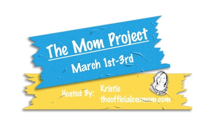 The Mom Project 2017 Summit