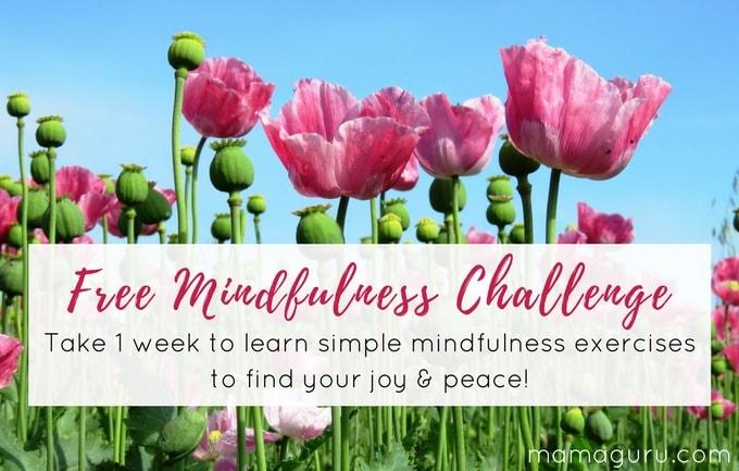 Free Mindfulness Challenge